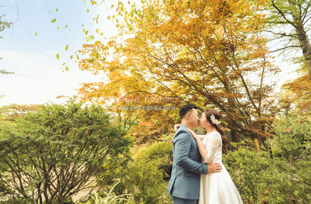Fall Korea pre wedding shoot