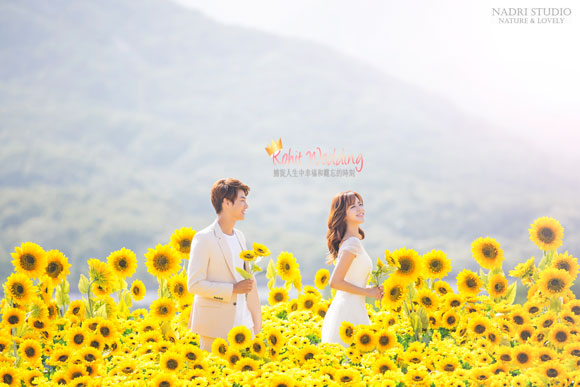 Korea-Pre-Wedding-Wedding-Shoot-Nadri-59