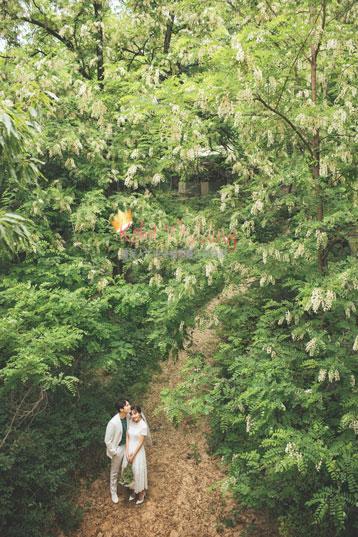 Kohit Wedding The yongma 9