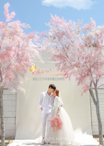 Korea pre wedding photography kohit wedding 8