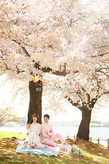 kohit-wedding-korea-pre-wedding-cherry-blossom-12