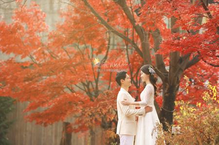 Kohit wedding prewedding fall leaves