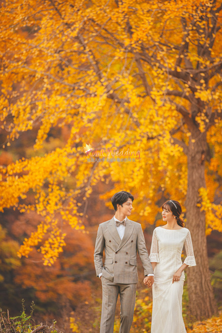 Kohit wedding prewedding in Korea - Nadri studio 59