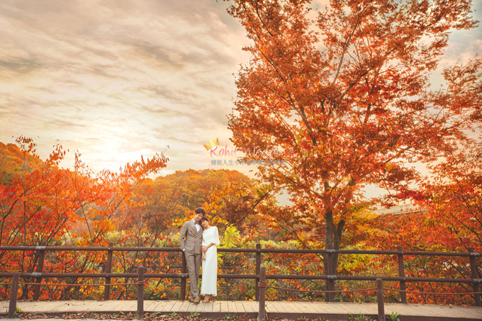 Kohit wedding prewedding in Korea - Nadri studio 63