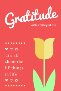 Gratitude, November and I