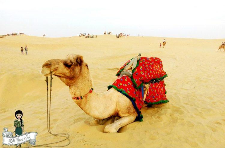 Jaisalmer Camel Safari - Sand Dunes - Rajasthan- Travel Diaries