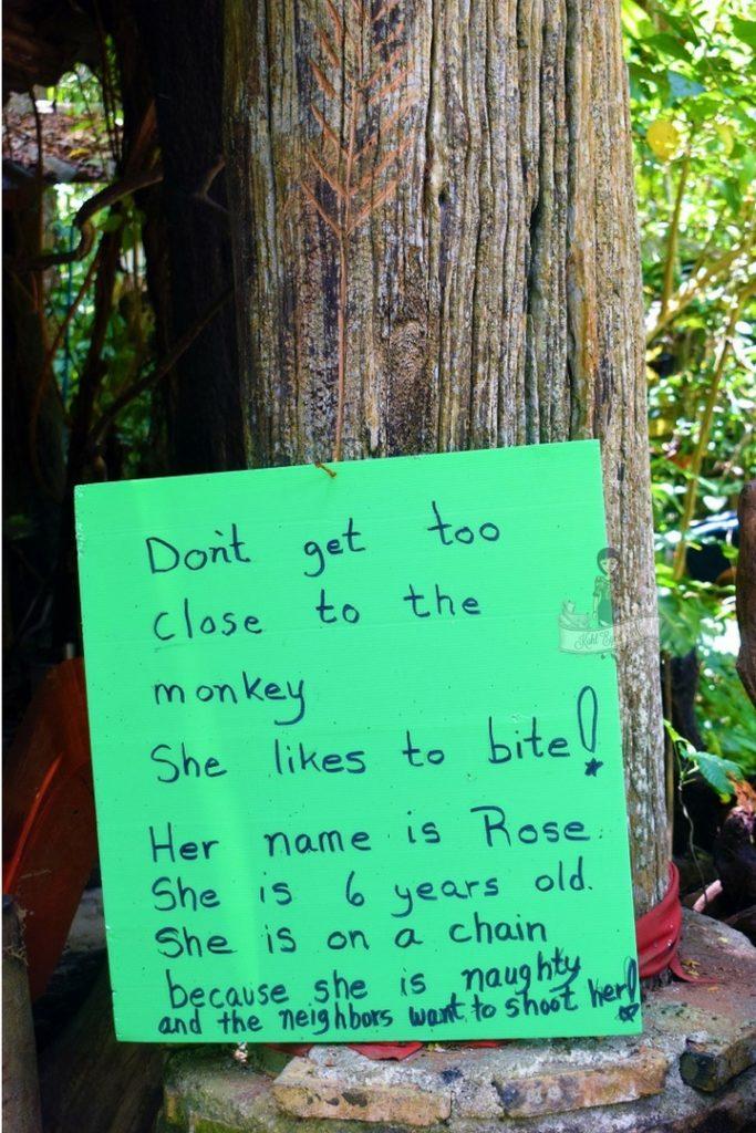 Handwritten Note Giant Catfish Farm Krabi
