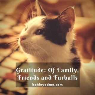 Gratitude: Of Family, Friends and Furballs