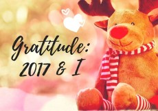 Gratitude 2017 Rewind 2017 Looking back on 2017 kohleyedme.com