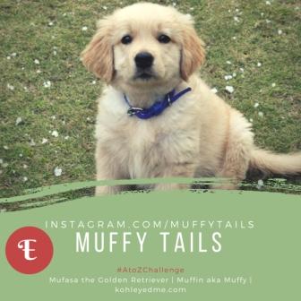 Exercise and Dogs MuffyTails kohleyedme.com