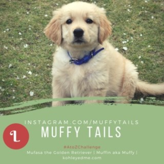 Life Lessons – A Message to Muffy  From Pablo and Lucky {Guest Post}