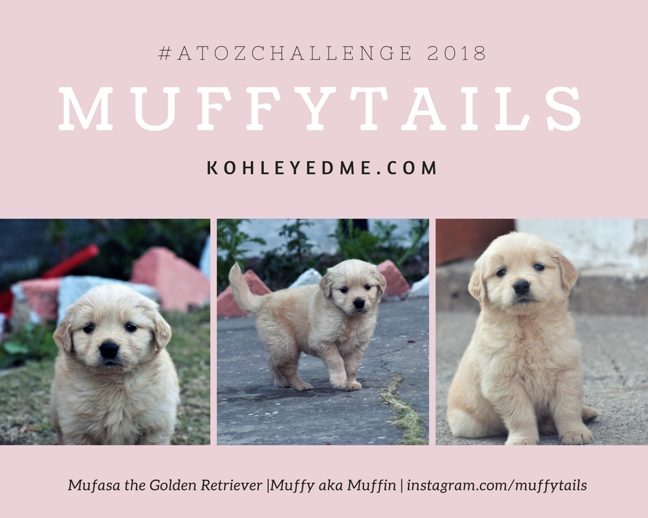 muffytails atozchallenge kohleyedme.com