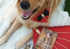 Book Review The Runaway Bridegroom