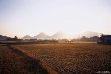 香川/讃岐国分寺