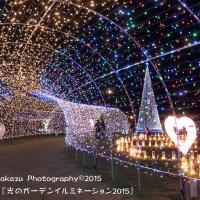 豊崎海浜公園  『光のガーデンイルミネーション2015』