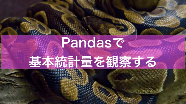 【Python】読み込んだCSVの基本統計量を観察する【体重晒し】