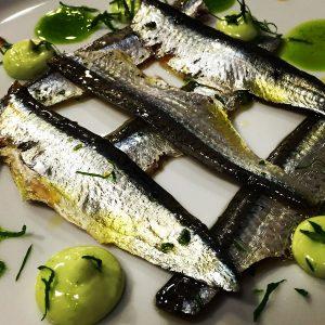 anchoas marinadas con plancton