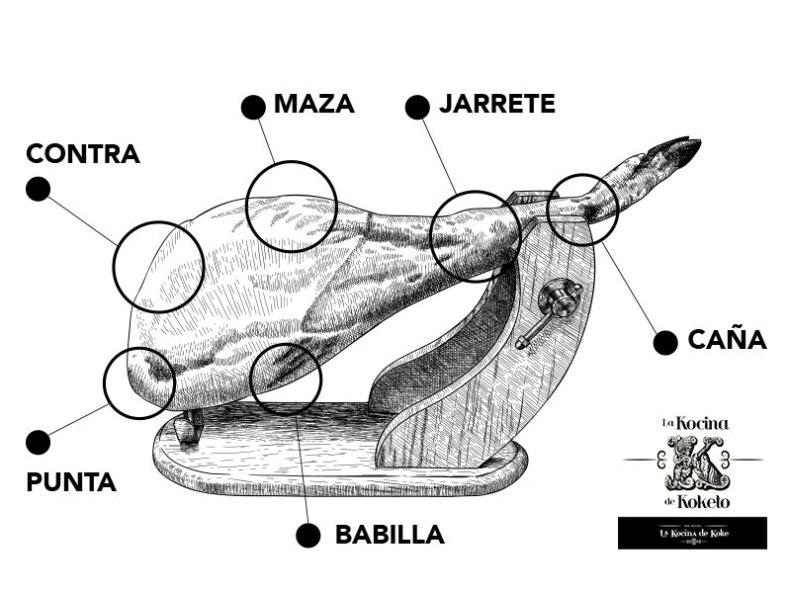 Partes del jamón ibérico