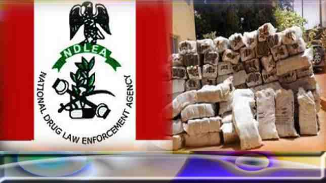 """""""I Sold Indian Hemp To Fund My Masters Degree Programme"""" - AAU Graduate 3"""