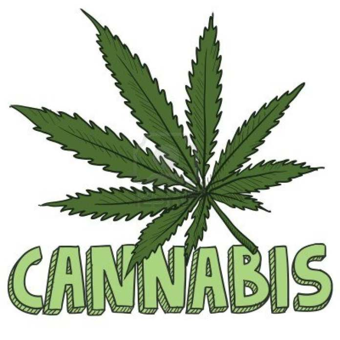 Cannabis To Be Prescribe In British Hospitals From November1 2