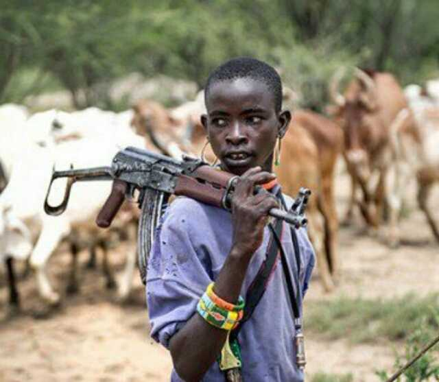 How Herdsman Caught Off My Hand - 54-Year Old Recounts 2