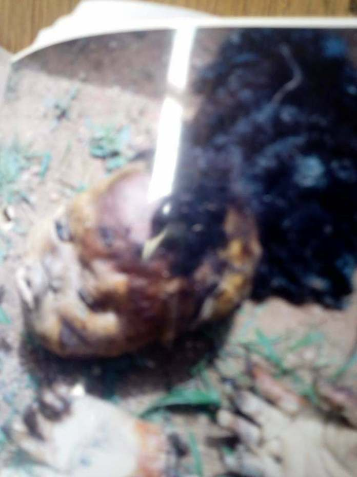 Awful! Mother Of Five Killed And Buried In A Church Altar By Ogun Prophets 2