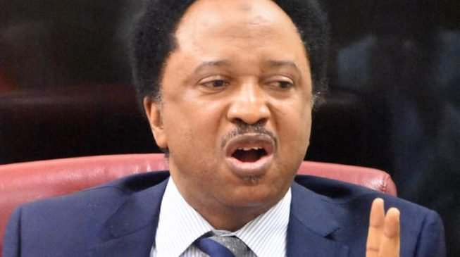 Abia State University Students' Abduction: We Hope We Don't Get To This Point - Shehu Sani