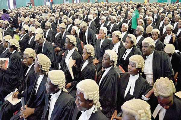 There Are Too Many Fake Lawyers In Imo - NBA Laments