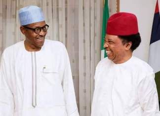 Kankara Boys: Abolish Boarding Schools, Drill Students And Teachers - Shehu Sani Advises FG