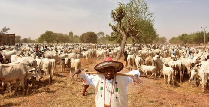 This Is The Real Reason FG Suspended Ruga Settlement Plan - Gov. Umahi Reveals 3