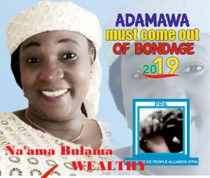 2019 Elections: Meet The Adamawa Governorship Candidates 3