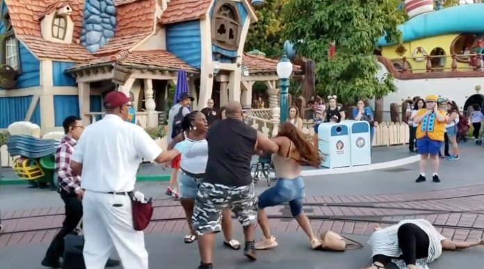 Children Scream As Men Punch Women In The Face During Disneyland Brawl 2