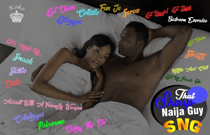 That Sharp Naija Guy: 24 Coded Ways Used To Refer To Sex 1