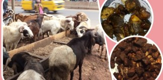 Sallah Meat: Twitter User Slammed For Asking If Eating Sallah Meat Is Biblical