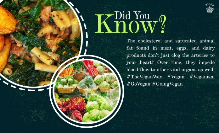FOOD: 5 Health Benefits of Going Vegan