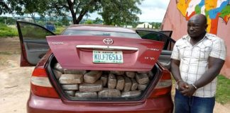 Pam Ezekiel Adamu: NDLEA Arrests Dismissed Staff With Dried Weeds In Niger