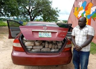 Pam Ezekiel Adamu: NDLEA Arrests Dismissed Staff With Dried Weeds In Niger