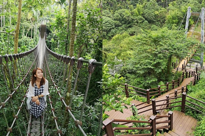 【雲林古坑】華山園區小天梯&情人橋~超好拍照的打卡秘境!綠意環繞俯瞰溪谷美景,還有森林裡的刺激鋼索吊橋
