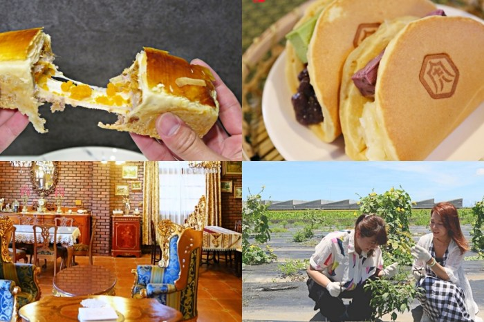 雲林虎尾周邊TOP6秘店|把歐洲搬到台灣的咖啡廳、地瓜糕點界的LV、創意柳橙醬油、復古時尚牽絲麻糬、自採自煮農場火鍋、米做的珠寶盒蛋糕
