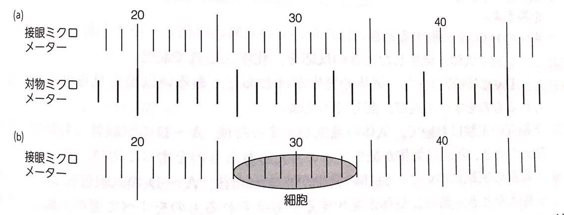 目盛り メーター 1 接眼 ミクロ