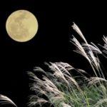 お月見の起源や由来は?2回目のお月見十三夜って?団子の作り方は?