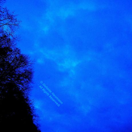 Blue Hour 1_skal