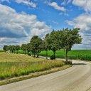 道が木と緑と空と雲の中、続いていく画像