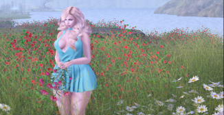 In to full Bloom_001