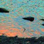渚の詩・遊泳