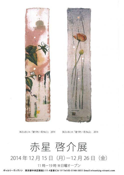 akaboshikeisuke2014