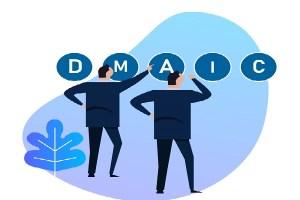 6 Sigma organizasyonu