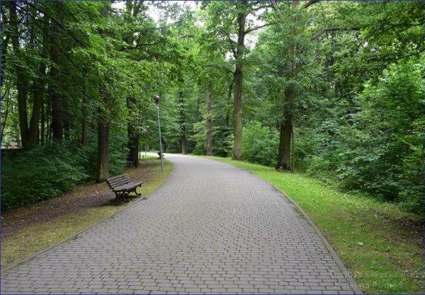 Park Zwierzyniec