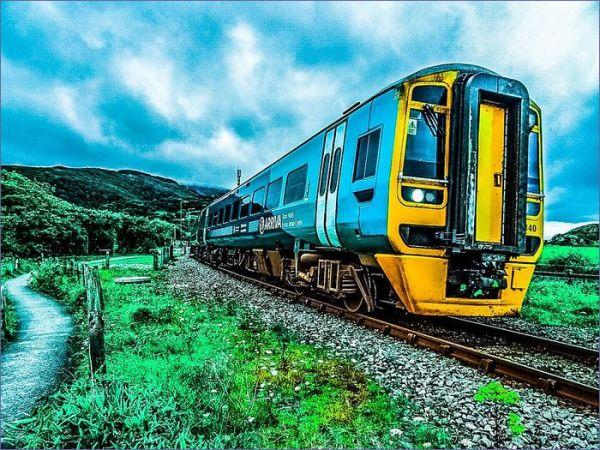 Walia pociąg