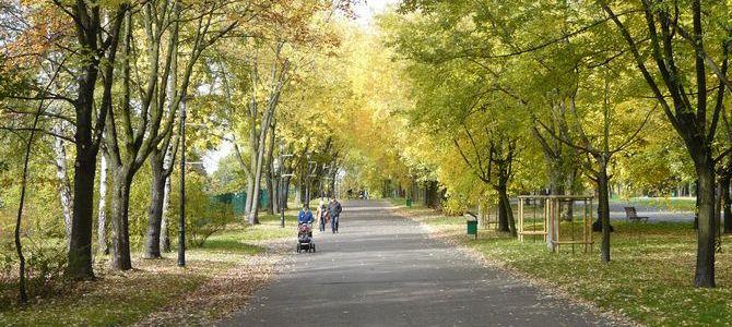 Park Śląski – 10 najciekawszych miejsc i atrakcji